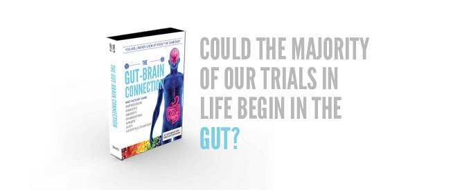 NEW! The Gut-Brain Connection: overcoming depression, anxiety, obesity, overeating, anger, lust and