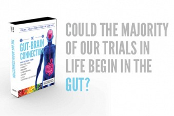 NEW! The Gut-Brain Connection: overcoming depression, anxiety, obesity, overeati...