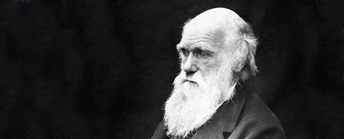 Creation and Evolution: Answering the Question, Did Darwin Murder God?